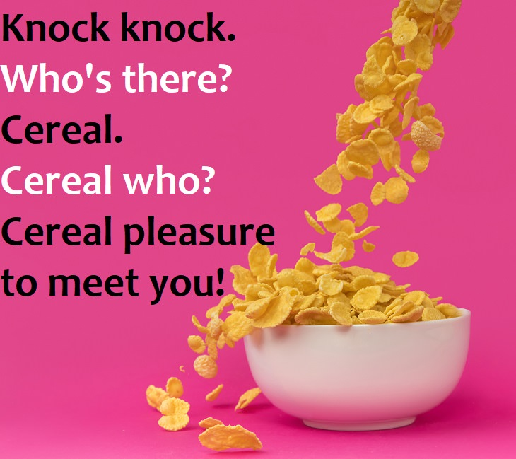 Knock Knock Jokes That Will Make You Laugh