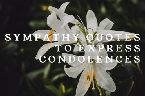Sympathy & Condolence Quotes For Loss