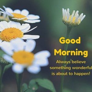 Good Morning Love Messages For Him & Her